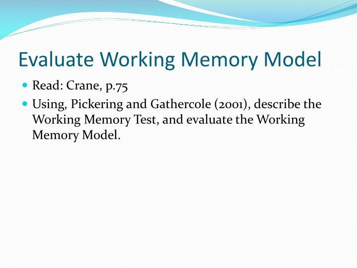 Evaluate Working Memory Model