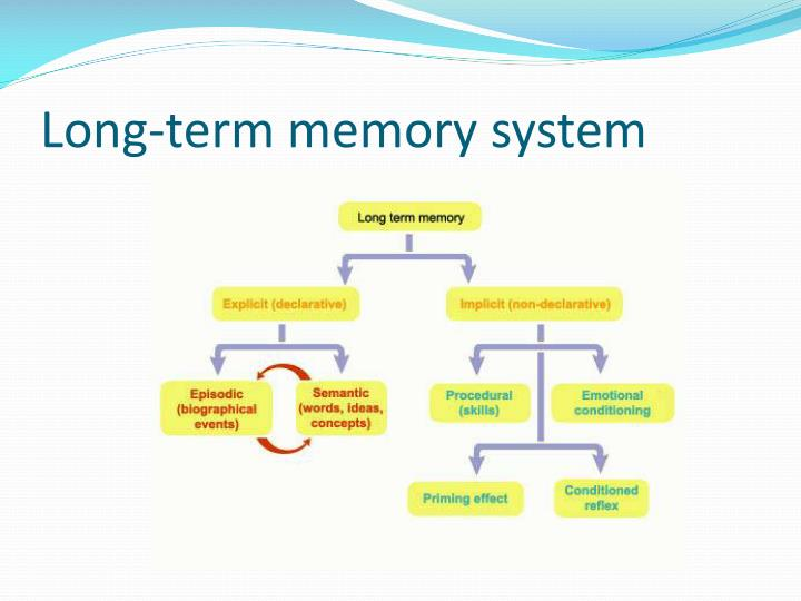 Long-term memory system
