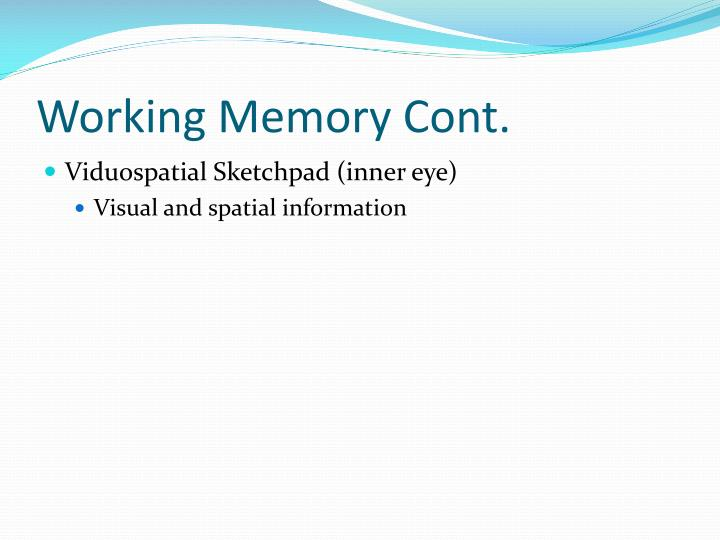 Working Memory Cont.