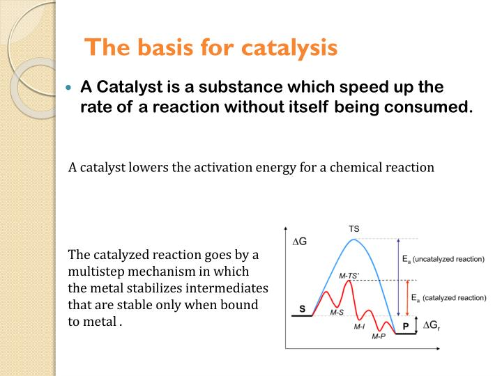 The basis for catalysis