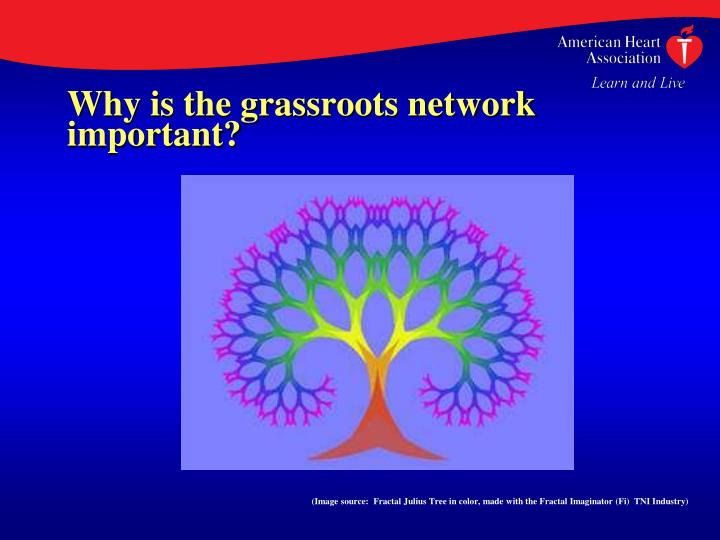 Why is the grassroots network  important?