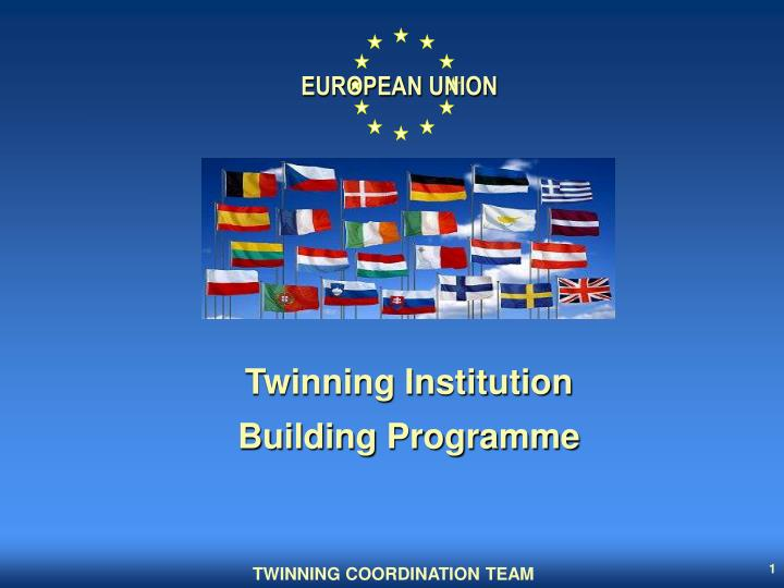 Twinning institution building programme