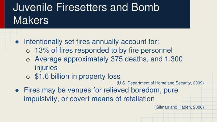 Juvenile firesetters and bomb makers1