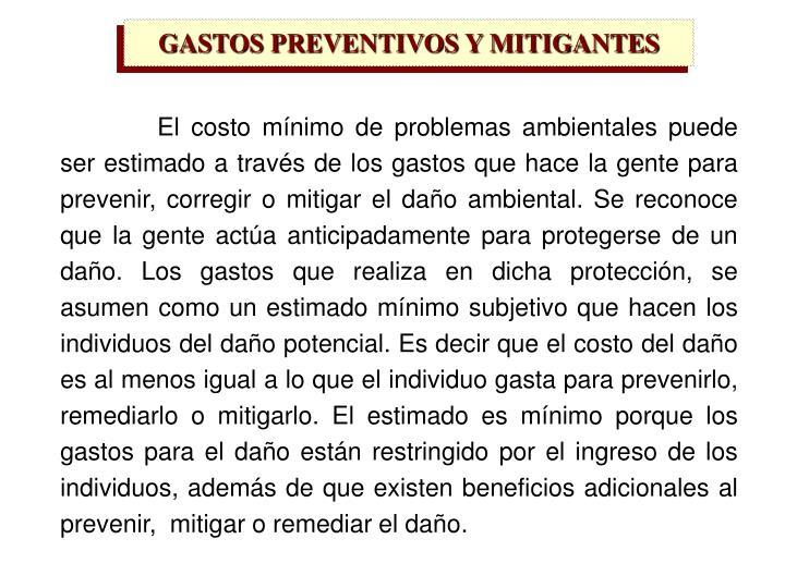 GASTOS PREVENTIVOS Y MITIGANTES
