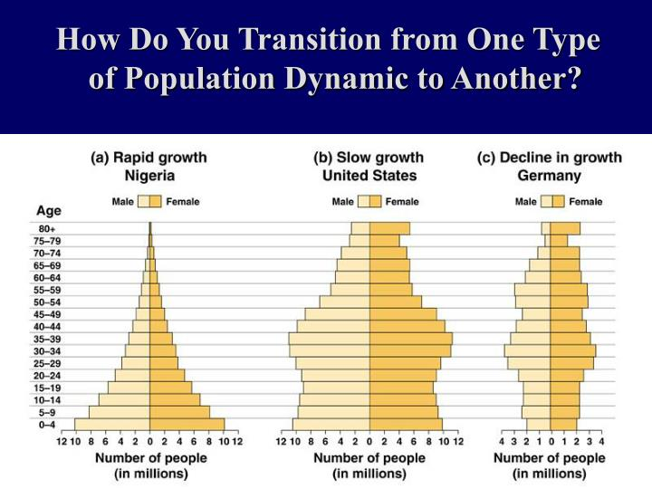 How Do You Transition from One Type of Population Dynamic to Another?