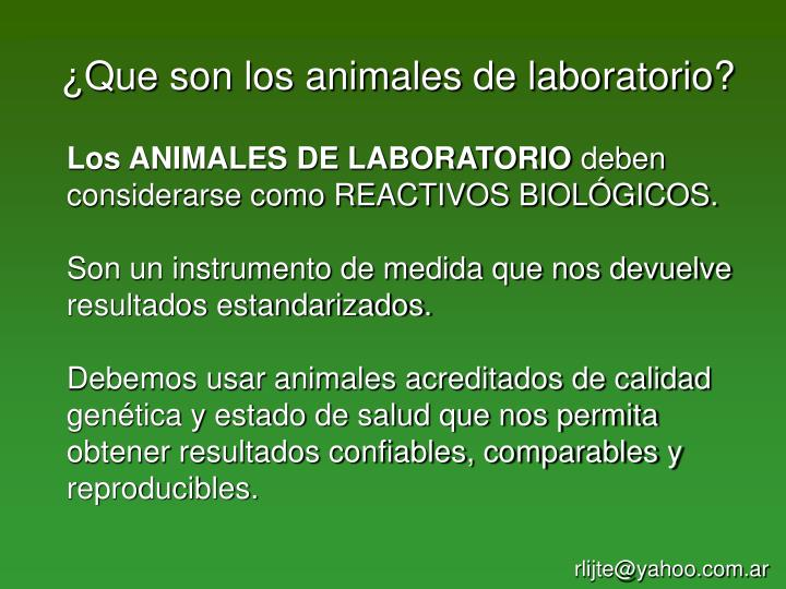 Que son los animales de laboratorio?