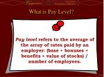 what is pay level