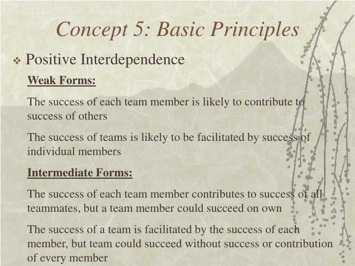 Concept 5: Basic Principles