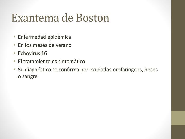 Exantema de Boston