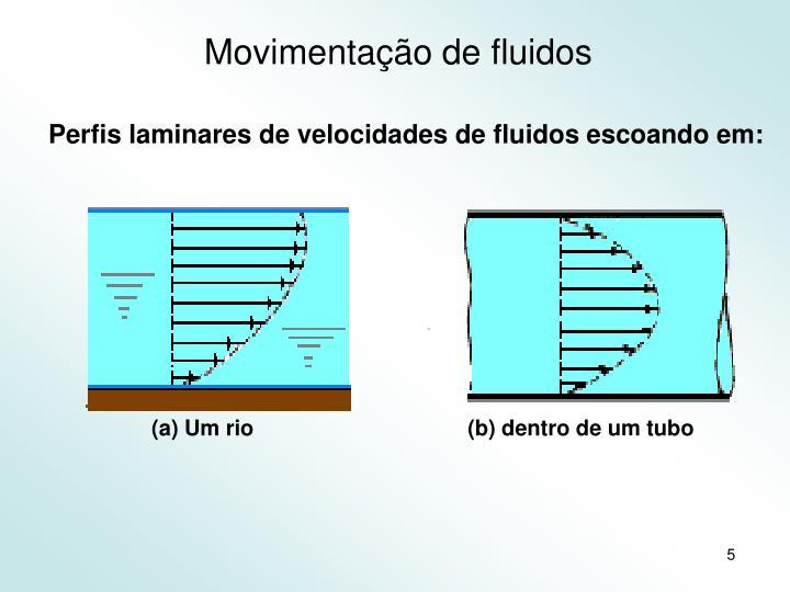 (a) Um rio(b) dentro de um tubo