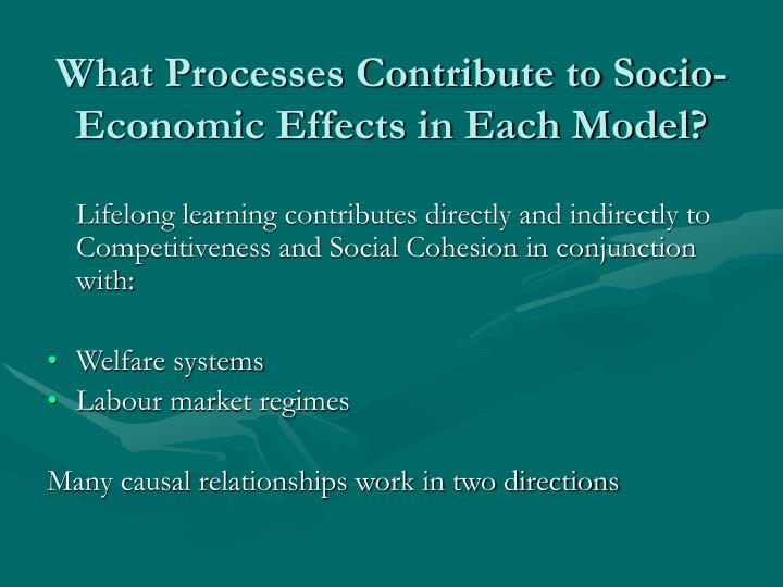 What Processes Contribute to Socio-Economic Effects in Each Model?