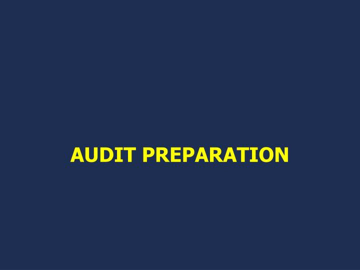 AUDIT PREPARATION