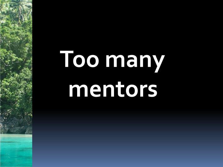 Too many mentors