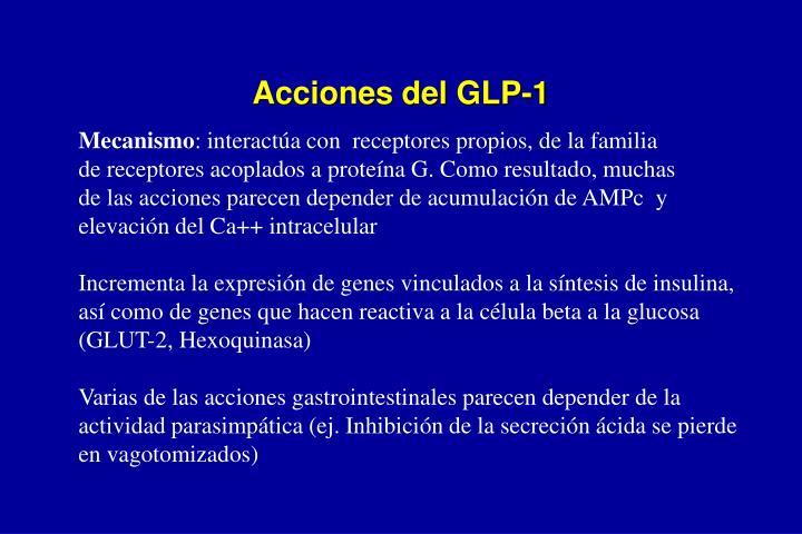 Acciones del GLP-1