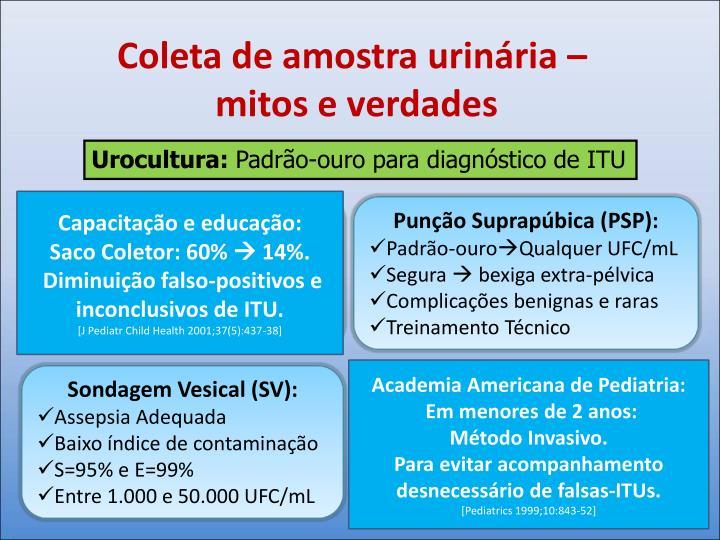 Saco Coletor (SC):