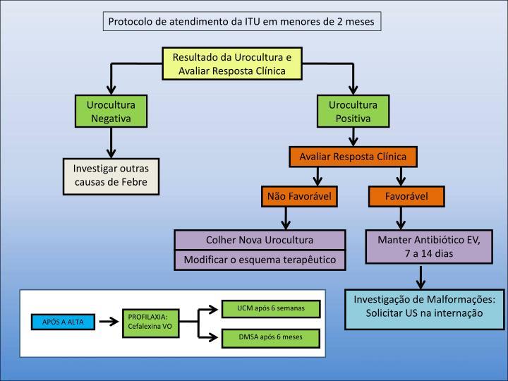 Protocolo de atendimento da ITU em menores de 2 meses