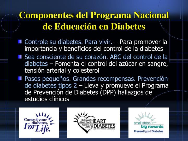 Componentes del Programa Nacional de Educación en Diabetes