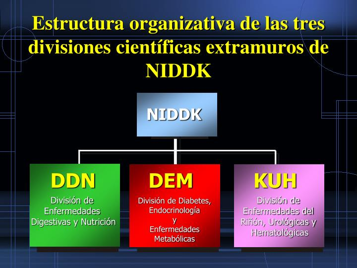 Estructura organizativa de las tres divisiones científicas extramuros de NIDDK