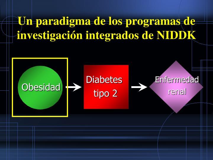 Un paradigma de los programas de investigación integrados de NIDDK