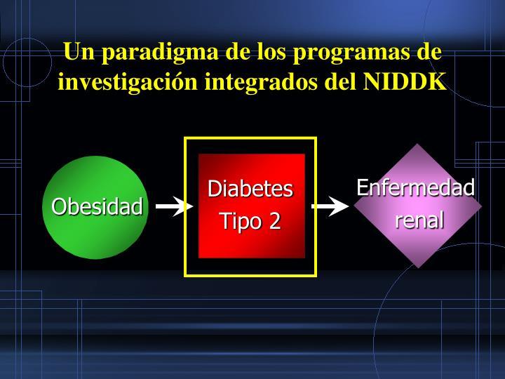 Un paradigma de los programas de investigación integrados del NIDDK