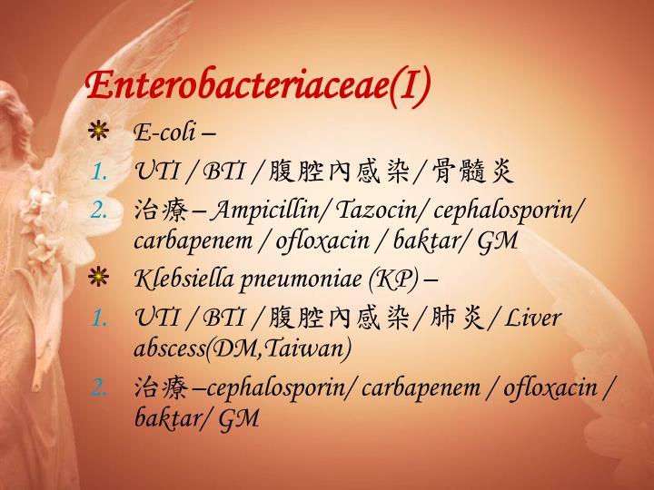 Enterobacteriaceae(I)