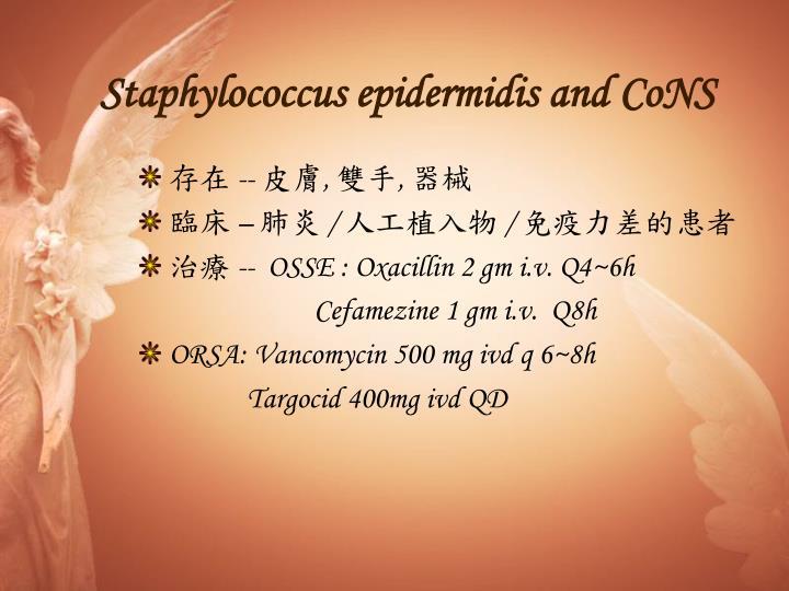 Staphylococcus epidermidis and CoNS
