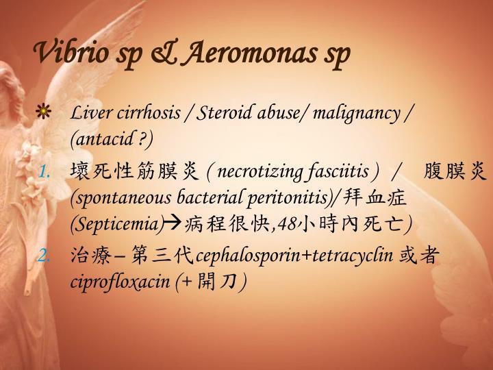 Vibrio sp & Aeromonas sp