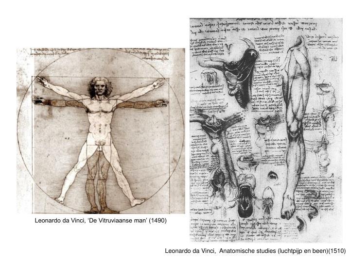 Leonardo da Vinci, 'De Vitruviaanse man' (1490)