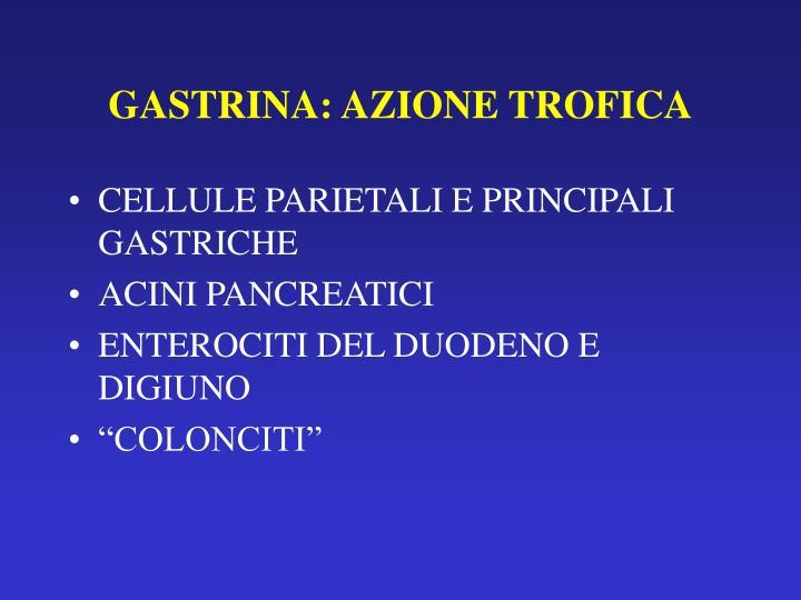 GASTRINA: AZIONE TROFICA