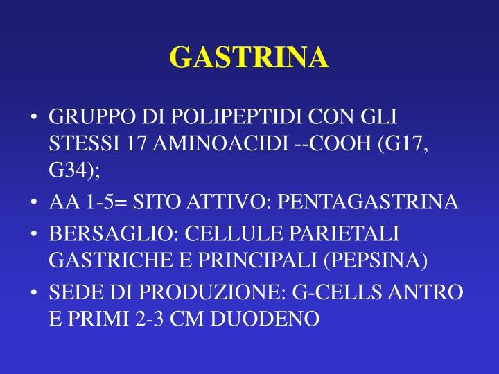 GASTRINA