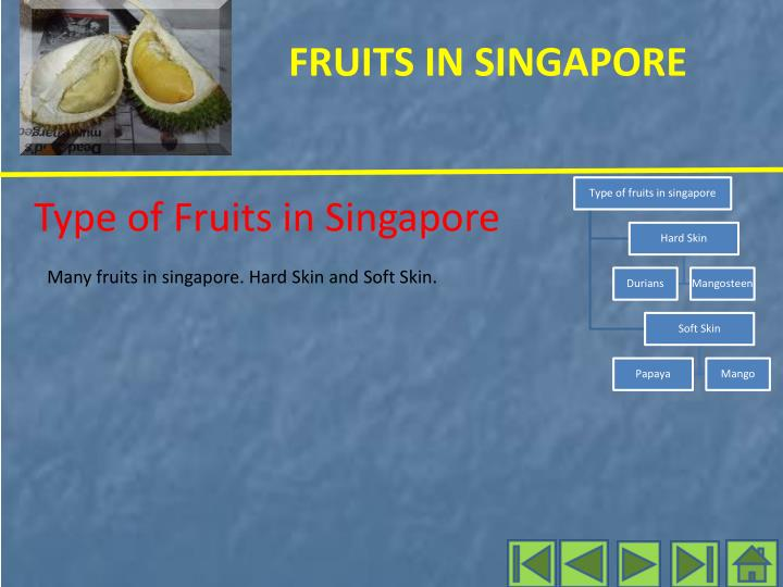 Type of Fruits in Singapore