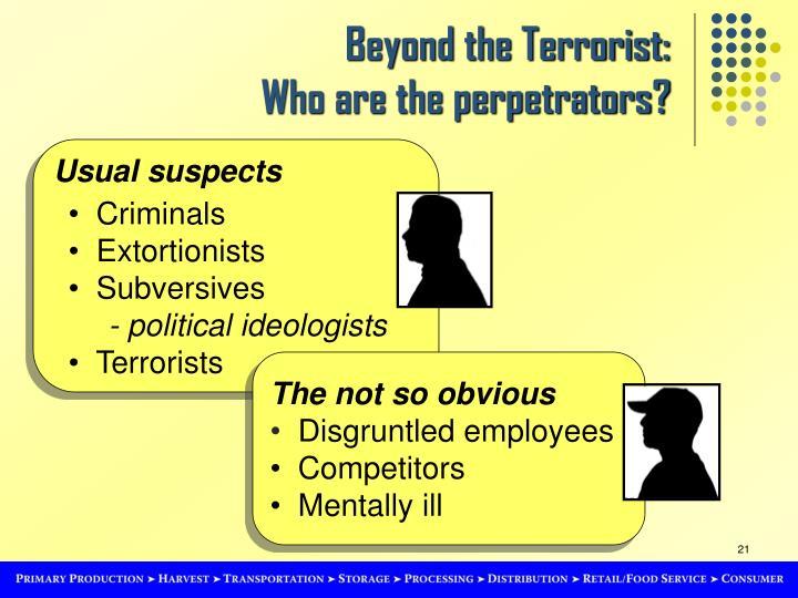 Beyond the Terrorist: