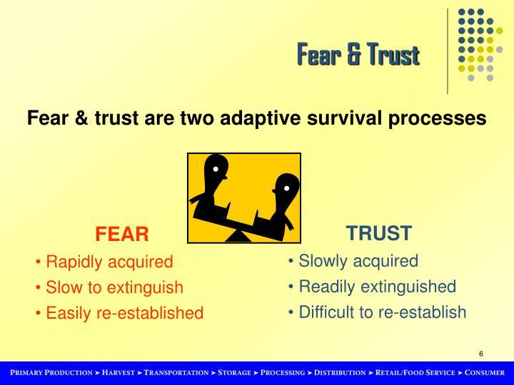 Fear & Trust
