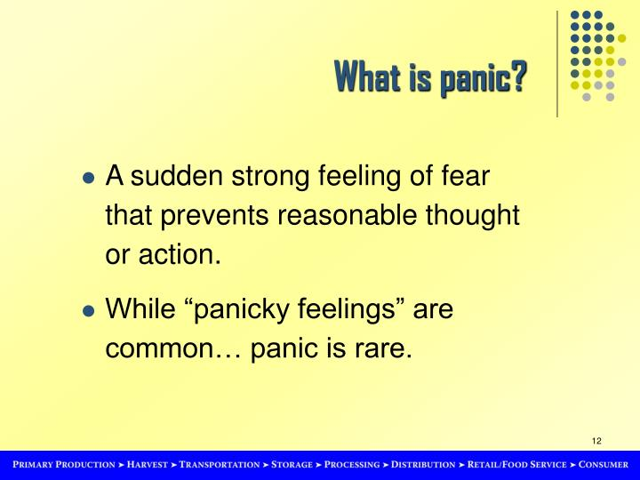 What is panic?