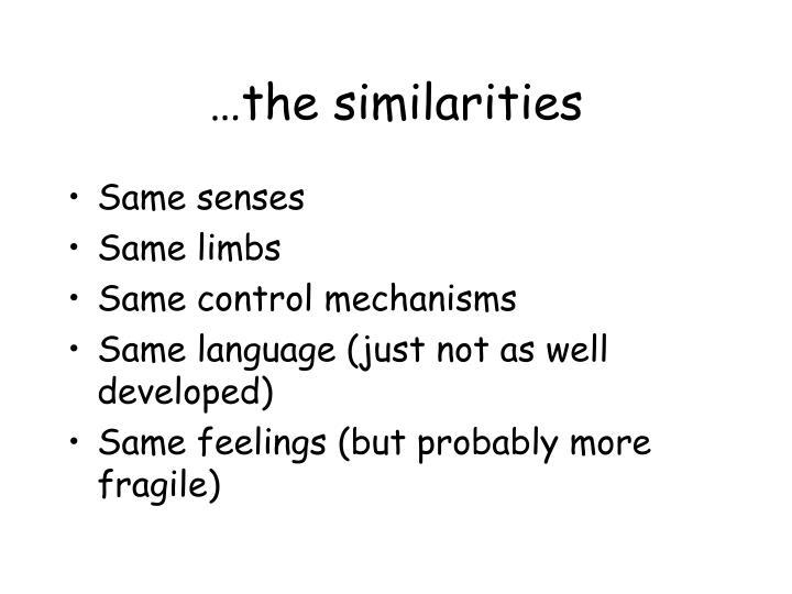 …the similarities