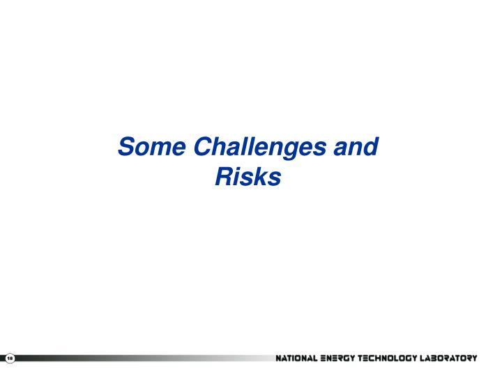 Some Challenges and Risks