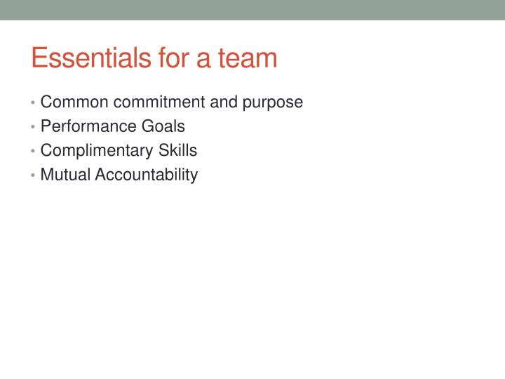 Essentials for a team