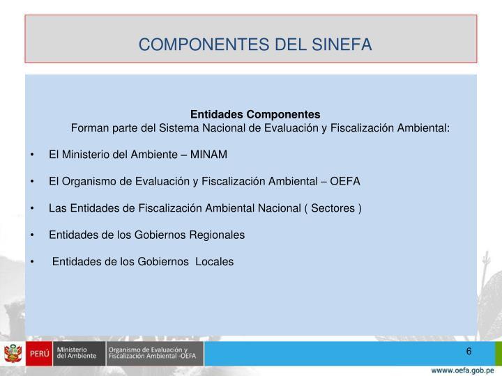 COMPONENTES DEL SINEFA