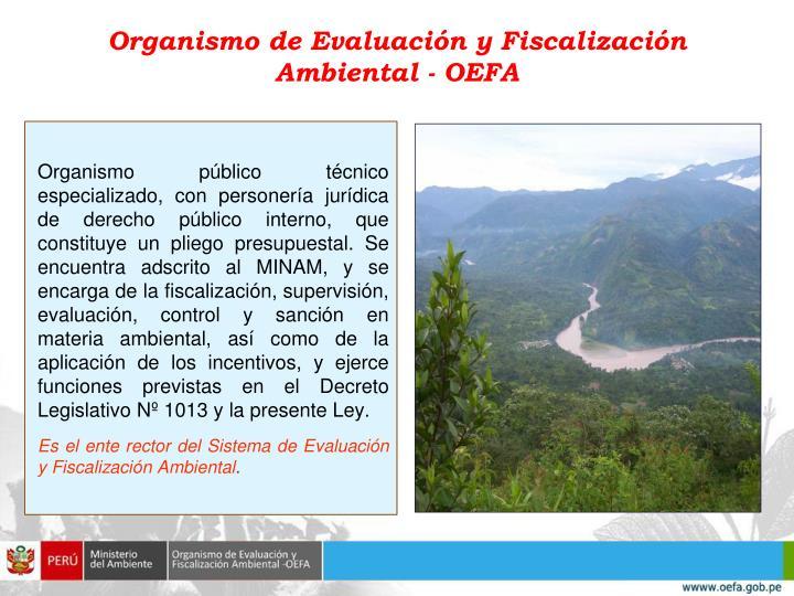 Organismo de Evaluación y Fiscalización Ambiental - OEFA