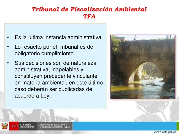 Tribunal de Fiscalización Ambiental