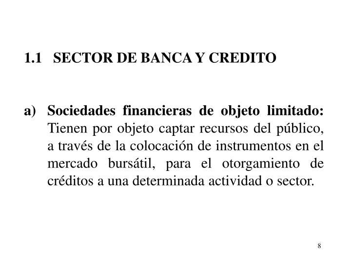 1.1   SECTOR DE BANCA Y CREDITO