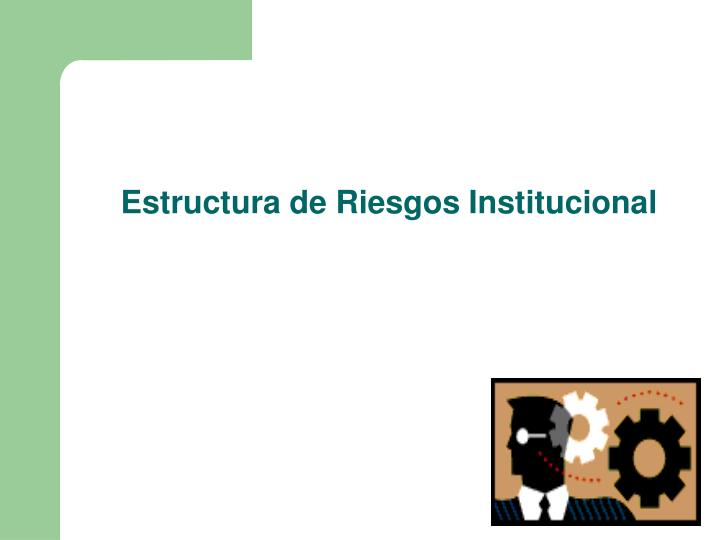 Estructura de Riesgos Institucional