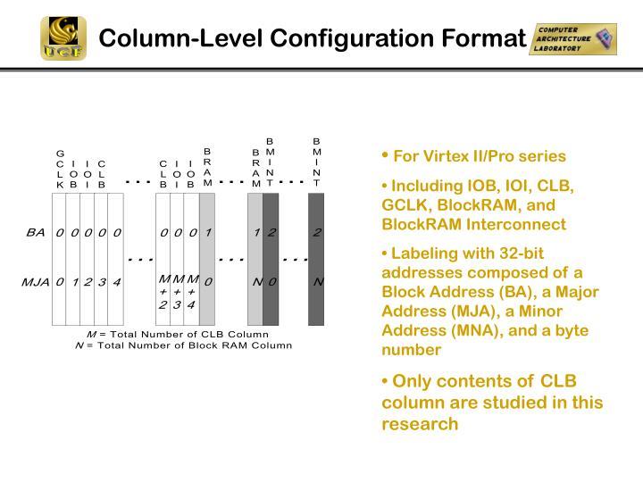 Column-Level Configuration Format