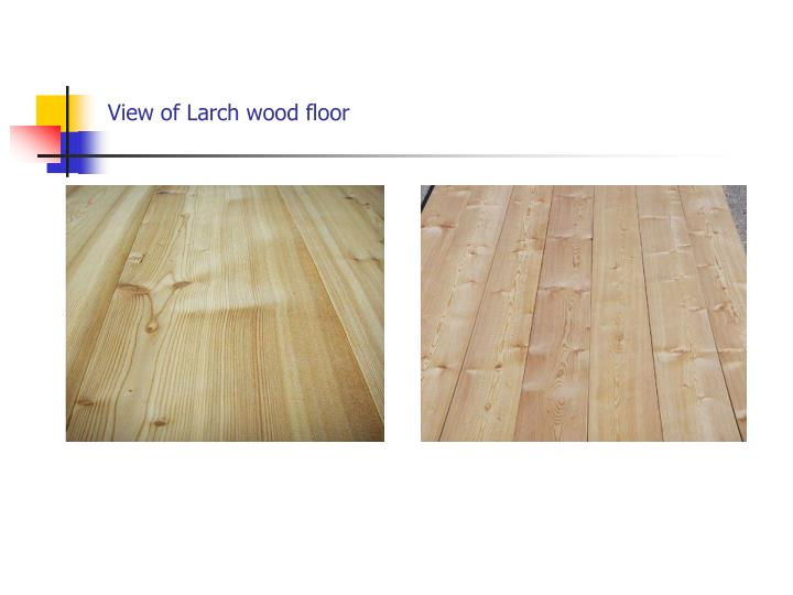 View of Larch wood floor
