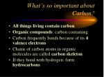 what s so important about carbon