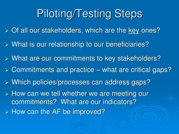 Piloting/Testing Steps