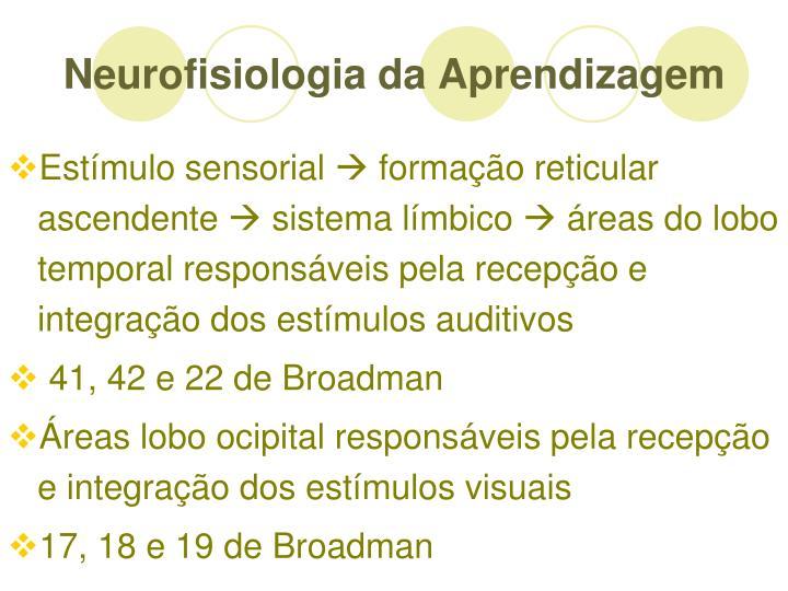 Neurofisiologia da Aprendizagem