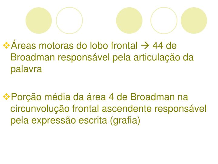 reas motoras do lobo frontal