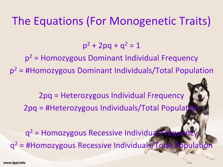 The Equations (For Monogenetic Traits)