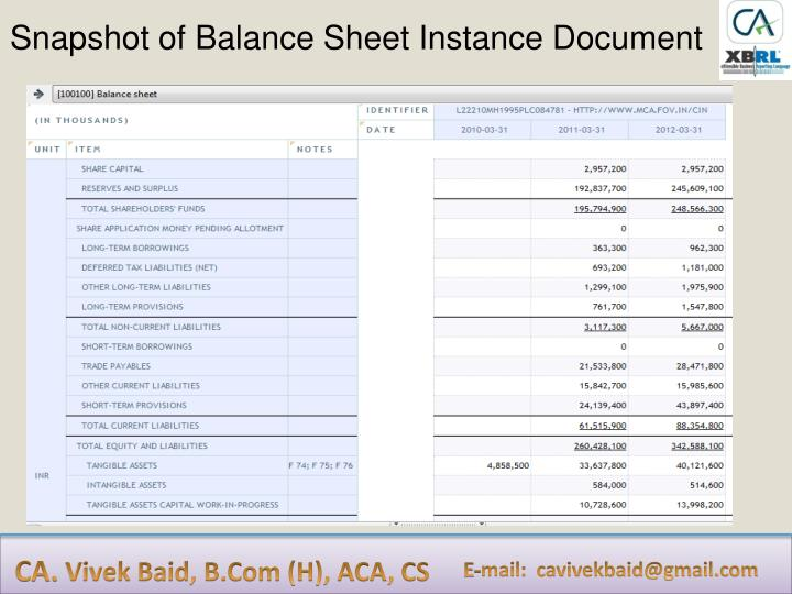 Snapshot of Balance Sheet Instance Document